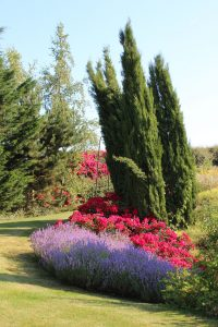 maillard paysage conception jardin massif pisseleu
