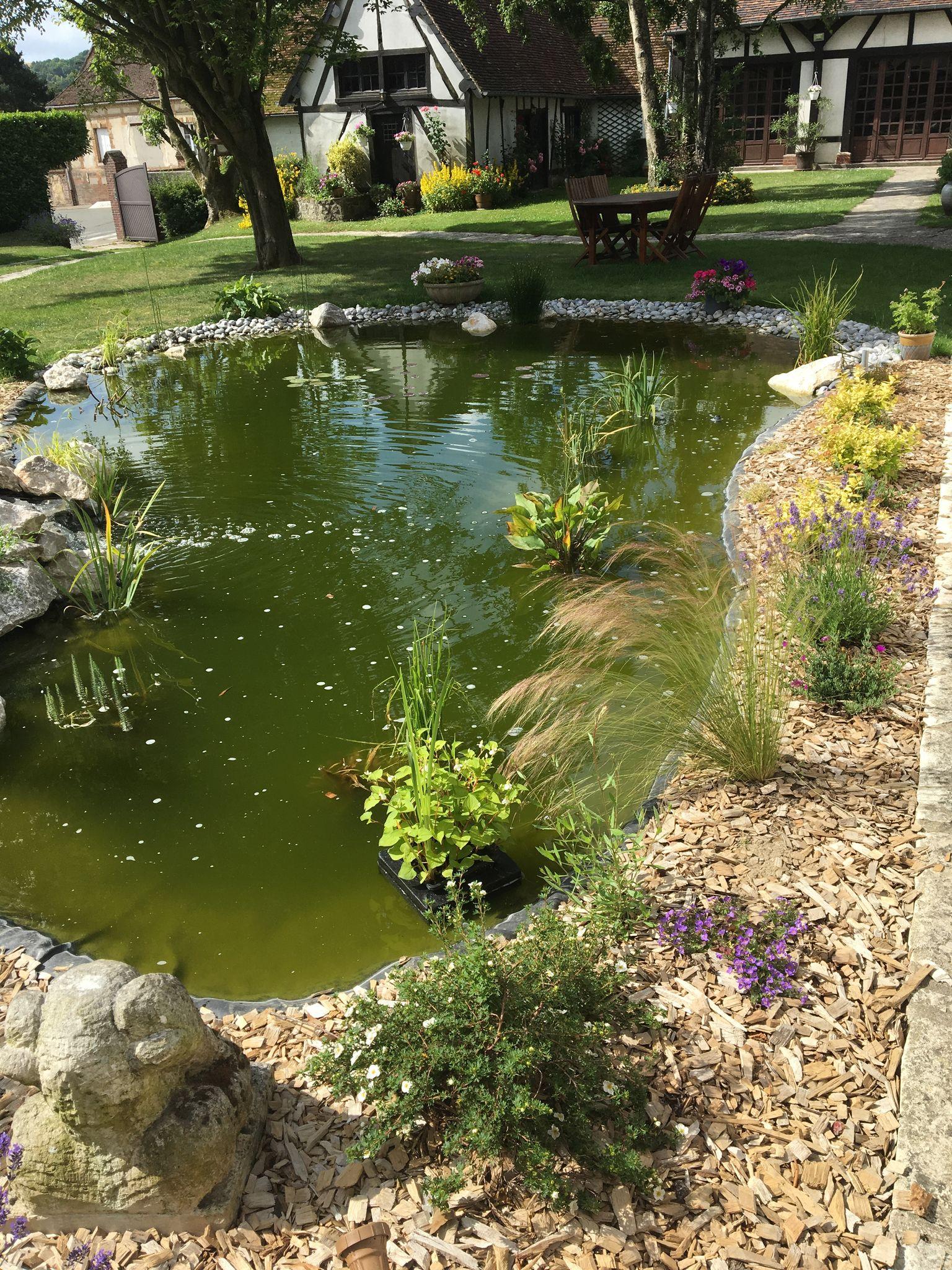 maillard paysage création jardin bassin piscine naturelle oise goincourt